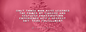 Wording Cover Layout - #Saying #Quote #Wording #animal #owl #fauna #beak #ecosystem #wildlife