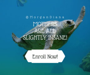 Call to Action Banner Layout - #Wording #CallToAction #Saying #Quote #turtle #sea #underwater #biology #geometry #hexagon #geometric #hexagons #geometrical