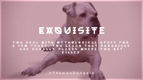 Wording Cover Layout - #Saying #Quote #Wording #like #bulldog #dog #mammal #english #carnivoran #olde #breed