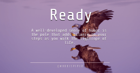 Quote Card Design - #Quote #Saying #Wording #prey #beak #bird #fauna #bald #wildlife #sky #accipitriformes #eagle