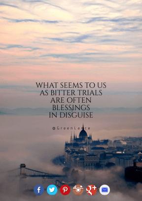 Print Quote Design - #Wording #Saying #Quote #brand #bird #fog #aqua #brown #mist #symbol #calm