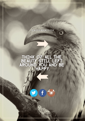 Print Quote Design - #Wording #Saying #Quote #with #orientation #Hornbill #azure #bird #arrows #blue #perches