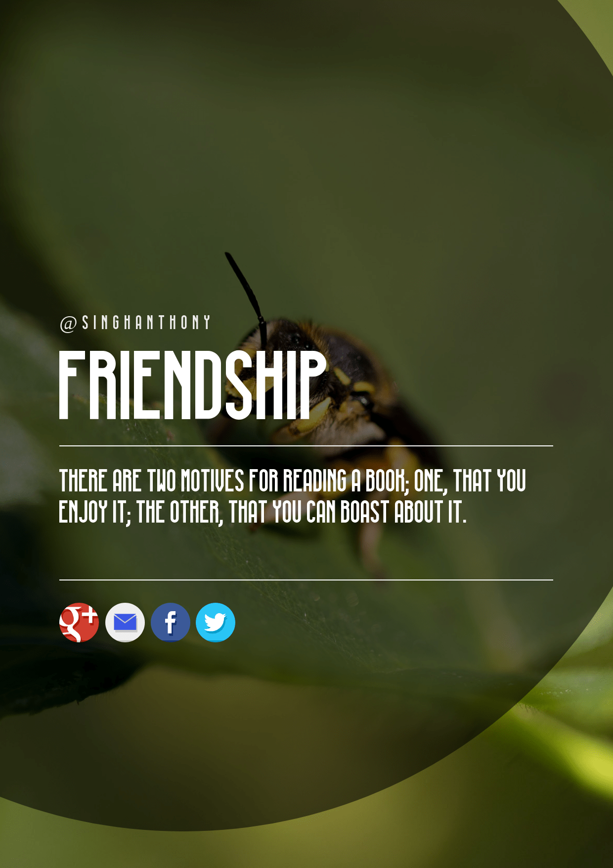 Insect,                Ecosystem,                Text,                Invertebrate,                Organism,                Macro,                Photography,                Membrane,                Winged,                Pest,                Font,                Pollinator,                Wing,                 Free Image
