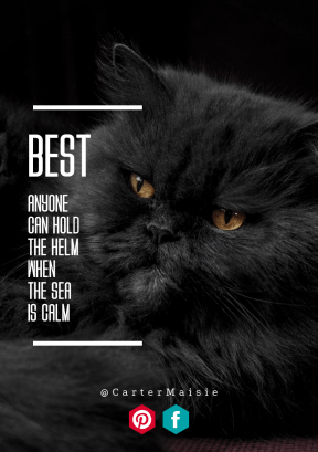 Print Quote Design - #Wording #Saying #Quote #small #cat #text #music #view #black #sized #signage