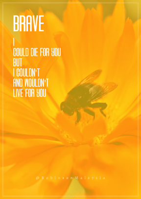 Print Quote Design - #Wording #Saying #Quote #winged #macro #nectar #center #orange #bright #yellow #membrane #shot #A