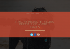 Print Quote Design - #Wording #Saying #Quote #text #blue #font #dog #product #cup #standard #aqua #wing #logo