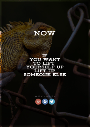 Print Quote Design - #Wording #Saying #Quote #wallpaper #sky #brand #organism #beak #fence