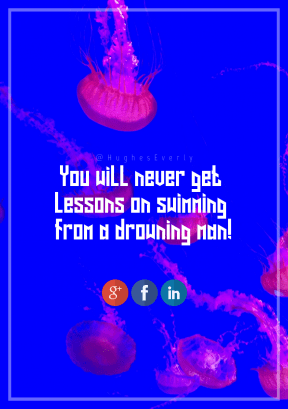 Print Quote Design - #Wording #Saying #Quote #invertebrate #product #biology #signage #font #line #red