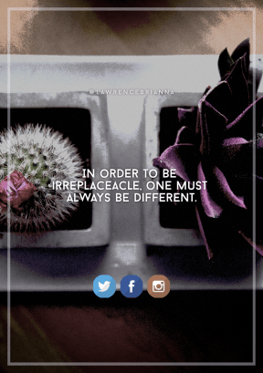 Print Quote Design - #Wording #Saying #Quote #graphics #brand #wallpaper #shot #flower #computer #angle #rectangle #cactus