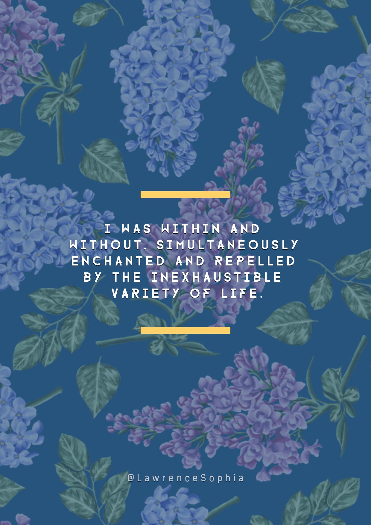 Blue,                Text,                Sky,                Lilac,                Purple,                Flora,                Flower,                Font,                Pattern,                Organism,                Plant,                Lavender,                Flowering,                 Free Image
