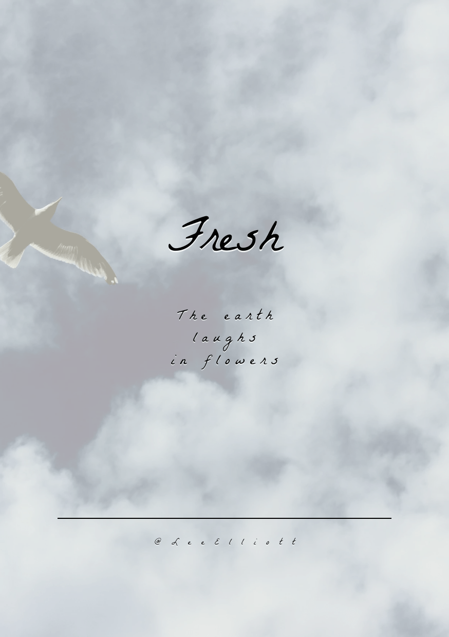 Sky,                Text,                Daytime,                Cloud,                Atmosphere,                Wing,                Font,                Bird,                Migration,                Flight,                Air,                Travel,                Airplane,                 Free Image