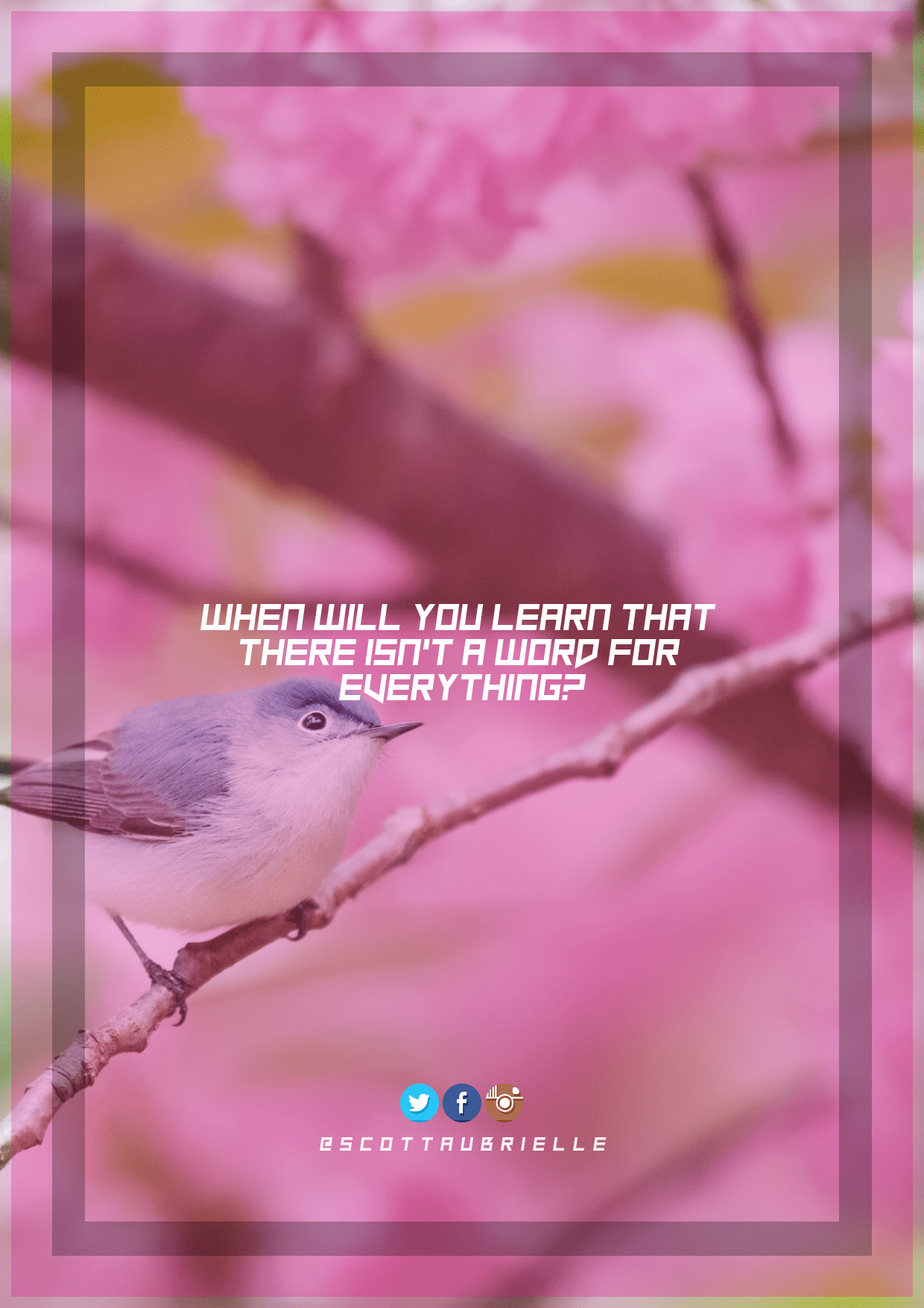 Pink,                Feather,                Beak,                Petal,                Branch,                Bird,                Twig,                Graphics,                World,                Art,                Brand,                Text,                Line,                 Free Image