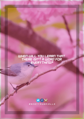 Print Quote Design - #Wording #Saying #Quote #world #art #brand #text #line #emberizidae #beak #product #blossom