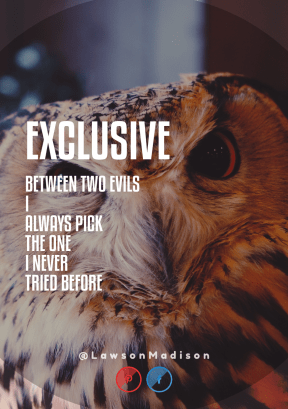 Print Quote Design - #Wording #Saying #Quote #area #sign #trademark #bird #wildlife #owl #fauna #line #text