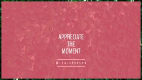Wallpaper design layout - #Wallpaper #Wording #Saying #Quote #grass #ivy #shrub #vegetation #plant #green #family #evergreen #leaf