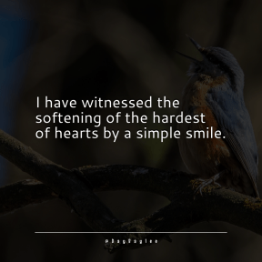 Square design layout - #Saying #Quote #Wording #wildlife #finch #bird #winged #membrane #beak #twig
