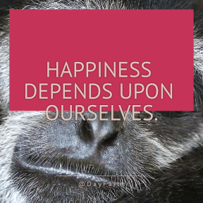 Square design layout - #Saying #Quote #Wording #macaque #head #fauna #fur #animal #nose