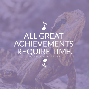 Square design layout - #Saying #Quote #Wording #vibrant #scales #A #agama #reptile #animal #with