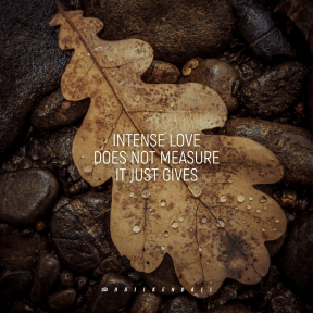 Square design layout - #Saying #Quote #Wording #still #computer #water #autumn #photography #life