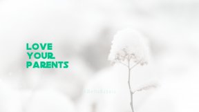 Wallpaper design layout - #Wallpaper #Wording #Saying #Quote #branch #precipitation #computer #covered #winter #black #A #twig