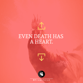 Square design layout - #Saying #Quote #Wording #bird #rooster #upload #circle #phasianidae #vertebrate #multimedia #computer #black #arrows