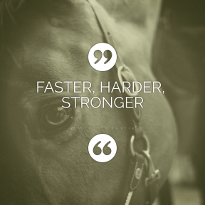 Square design layout - #Saying #Quote #Wording #button #bridle #tack #like #quote #circular #writer #mustang #mane