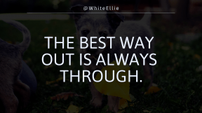 Wallpaper design layout - #Wallpaper #Wording #Saying #Quote #mammal #grass #dog #breeds #cattle #breed #native #plant #australian #companion