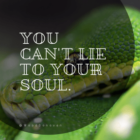 Square design layout - #Saying #Quote #Wording #network #vine #reptile #shapes #social #mamba