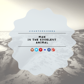 Square design layout - #Saying #Quote #Wording #line #ovals #trademark #squares #coast #fancy #angle #ice #brand