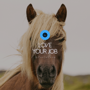 Square design layout - #Saying #Quote #Wording #mare #badges #horse #in #badge #social #supplies #retro #linked