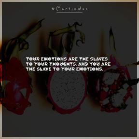 Square design layout - #Saying #Quote #Wording #still #fruit #pitaya #photography #life