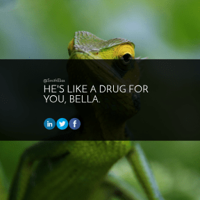 Square design layout - #Saying #Quote #Wording #animal #iguania #circle #reptile #font