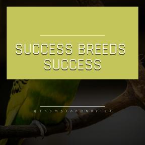 Square design layout - #Saying #Quote #Wording #parrot #pet #lovebird #perico #common #bird #organism #beak #parakeet