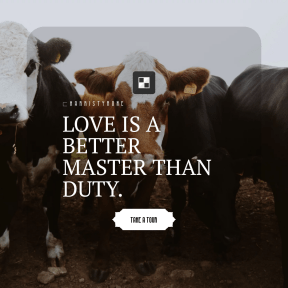 Call to action design layout - #CallToAction #Wording #Saying #Quote #shape #dairy #brown #inset #livestock #goat #square