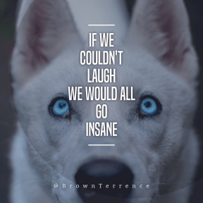 Square design layout - #Saying #Quote #Wording #wolfdog #circular #dog #shapes #husky #mammal #round #tamaskan
