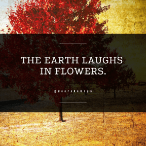 Square design layout - #Saying #Quote #Wording #maple #paint #deciduous #tree #autumn