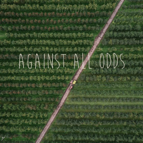Square design layout - #Saying #Quote #Wording #family #plantation #field #crop #grass #tree #agriculture #line #green