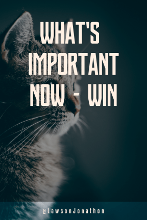 Poster Saying Layout - #Quote #Wording #Saying #black #computer #haired #whiskers #cat #small #short #organism #like #mammal