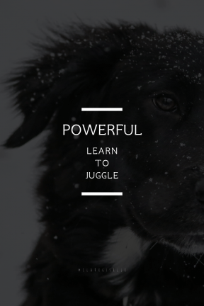 Poster Saying Layout - #Quote #Wording #Saying #breed #flat #dog #group #winter #black #snow #monochrome #white