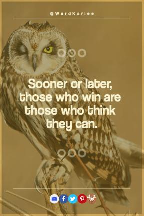 Poster Saying Layout - #Quote #Wording #Saying #owl #brand #electric #beak #azure #font #et #icon