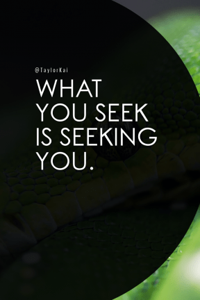 Poster Saying Layout - #Quote #Wording #Saying #organism #mamba #green #scaled #vine #close #snake #terrestrial #animal