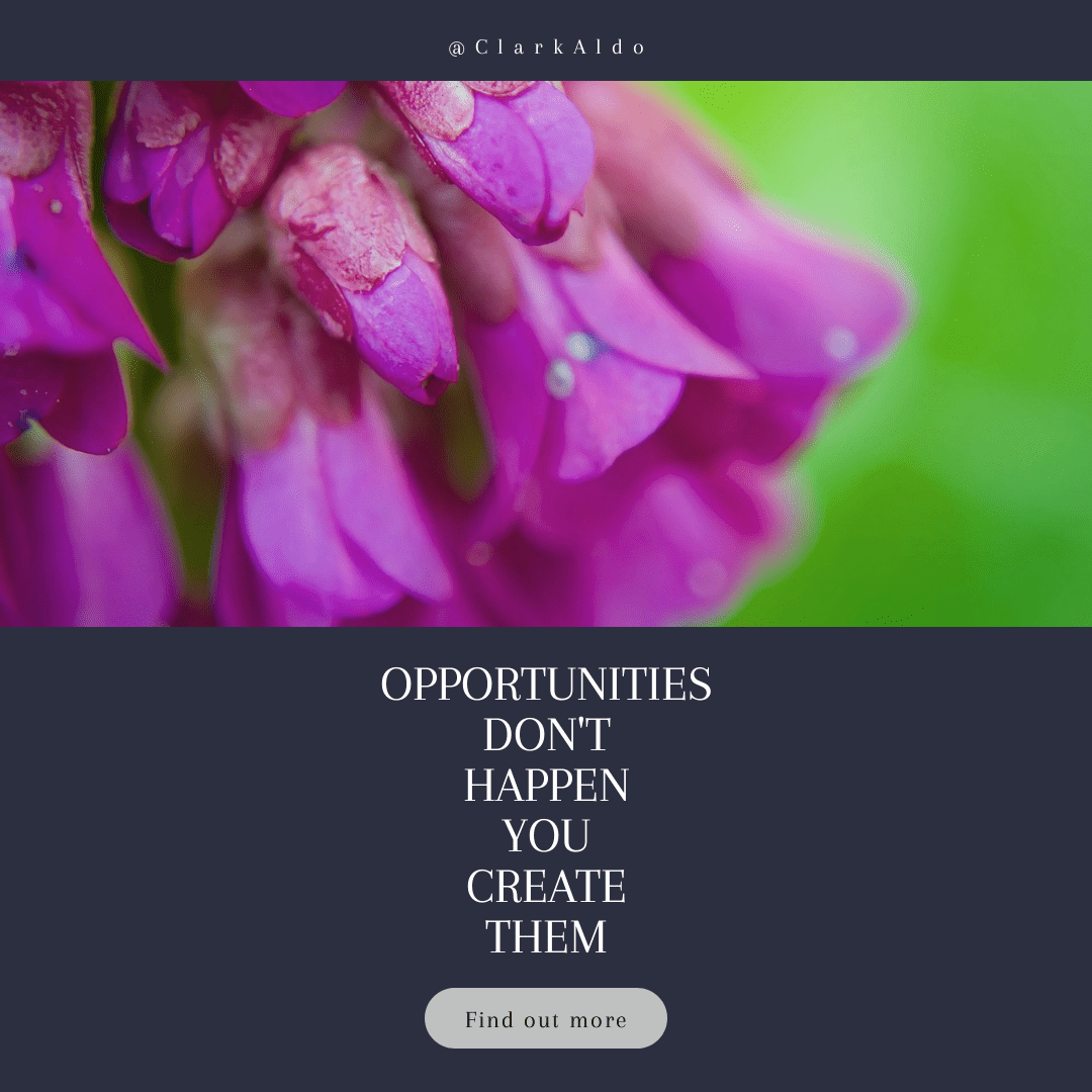 Flower,                Violet,                Purple,                Flora,                Text,                Petal,                Flowering,                Plant,                Rose,                Family,                Magenta,                Computer,                Wallpaper,                 Free Image