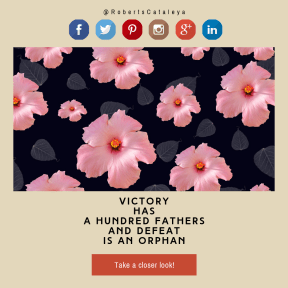 Call to action design - #Saying #Quote #CallToAction #Wording #vintage #stop #sign #hibiscus #logo #font #shapes #product #floral #brand