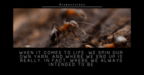 Quote image - #Quote #Wording #Saying #insect #arthropod #pest #membrane #organism #wasp #winged #ant