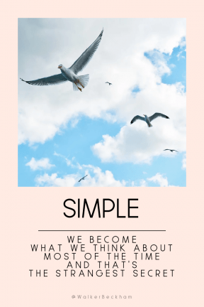 Quote image - #Quote #Wording #Saying #background #peace #seagull #to #white #bird #migrate