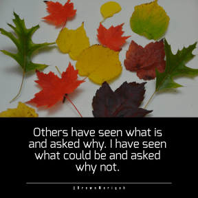 Quote image - #Quote #Wording #Saying #fall #leavesscreen #plant #natural #background
