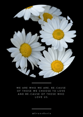Quote image - #Quote #Wording #Saying #flower #circular #white #geometrical #shape #daisy #geometric #daisiesflowers #essentials #circle
