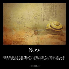 Quote image - #Quote #Wording #Saying #nature #background #texture #snail #animal #shell