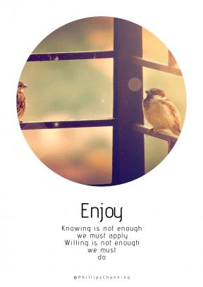 Quote image - #Quote #Wording #Saying #parakeet #sitting #green #black #music