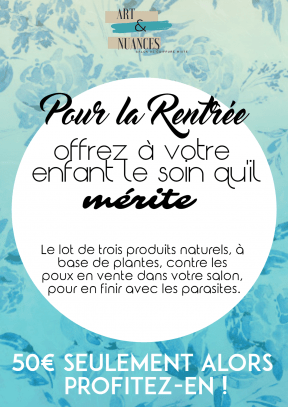 AFFICHE SALON RENTREE